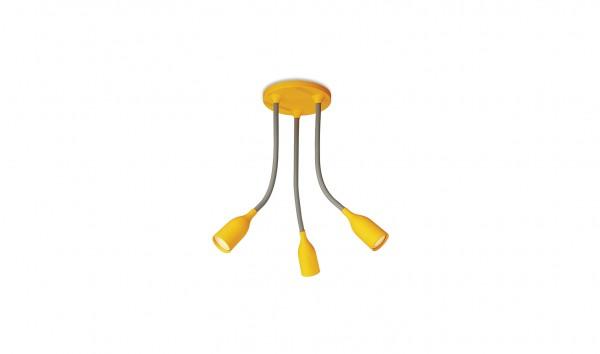 Đèn Trần Philips Spot Light 55543/34